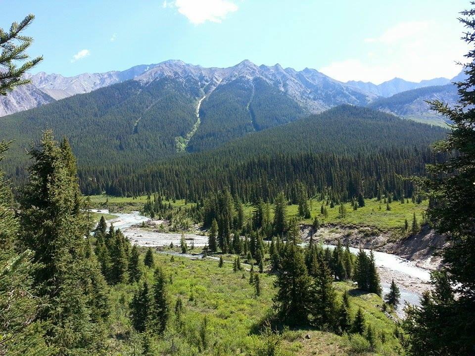 kanada-kalliovuoret-2015-7